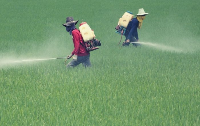 44% of farmers poisoned by pesticides globally each year