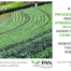 Agroecology Principle 4 - Promoting complexity over simplicity