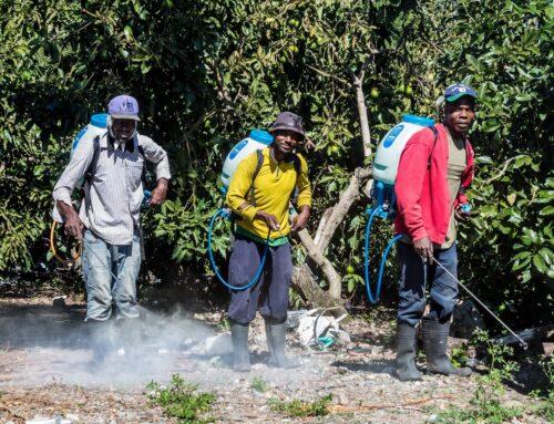 Impacts of pesticides on Caribbean farming communities