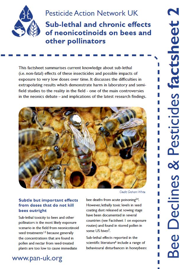 Bees and Pollinators - Pesticide Action Network UK