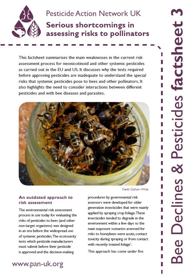 Bee Factsheet 3
