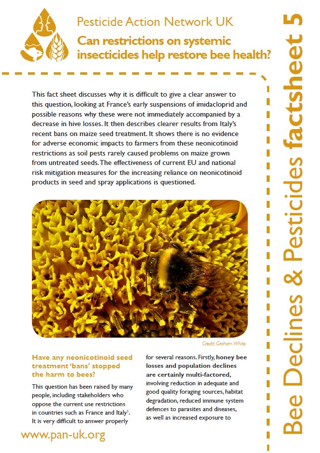 Bee Factsheet 5