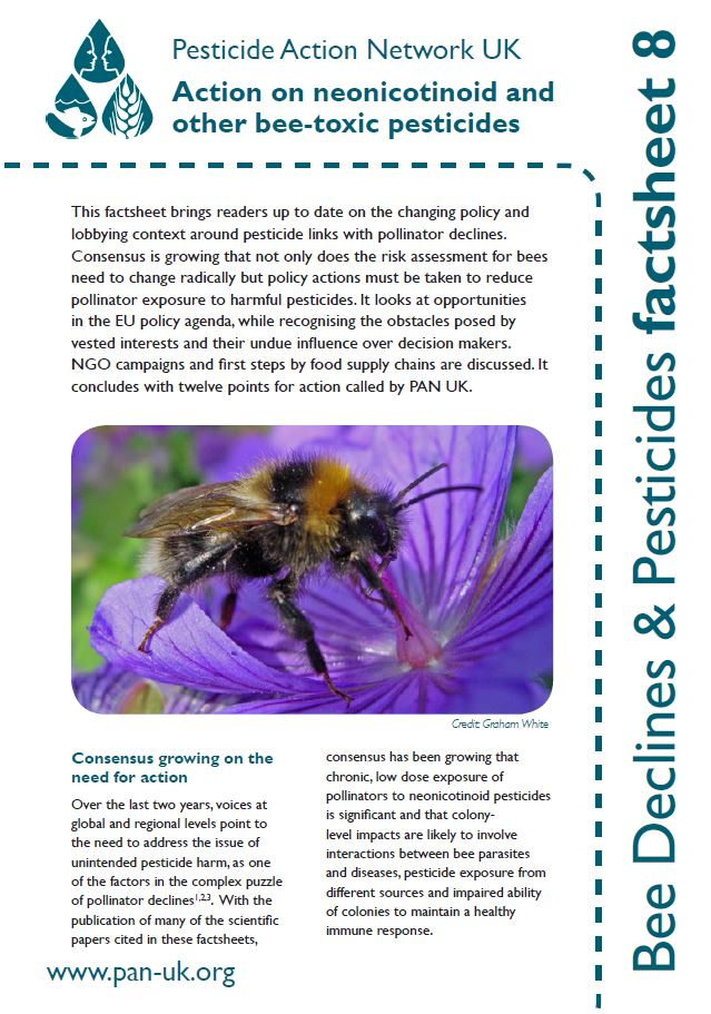 Bee Factsheet 8