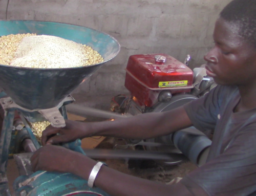 New Milling Equipment for Organic Cotton Farmers in Benin