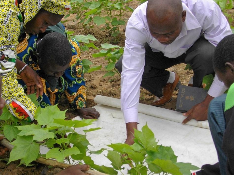 Benin - 5013 farmers trained