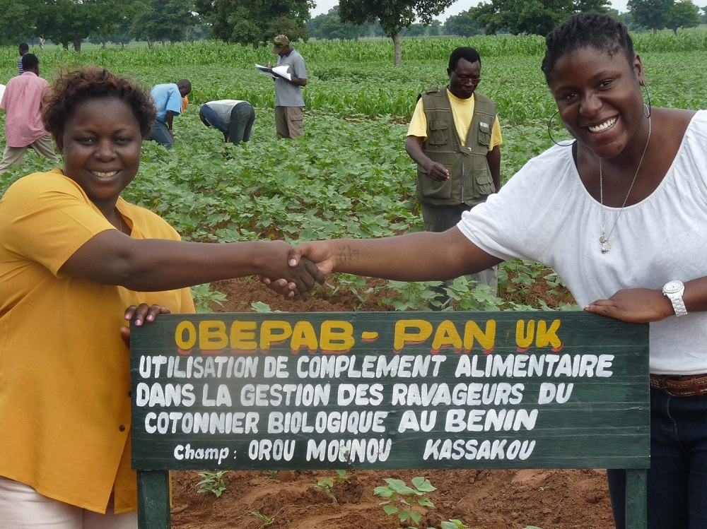 Empowering cotton farmers in Benin
