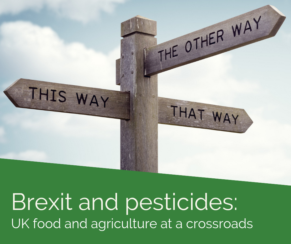 Brexit and pesticides: UK food and agriculture at a crossroads