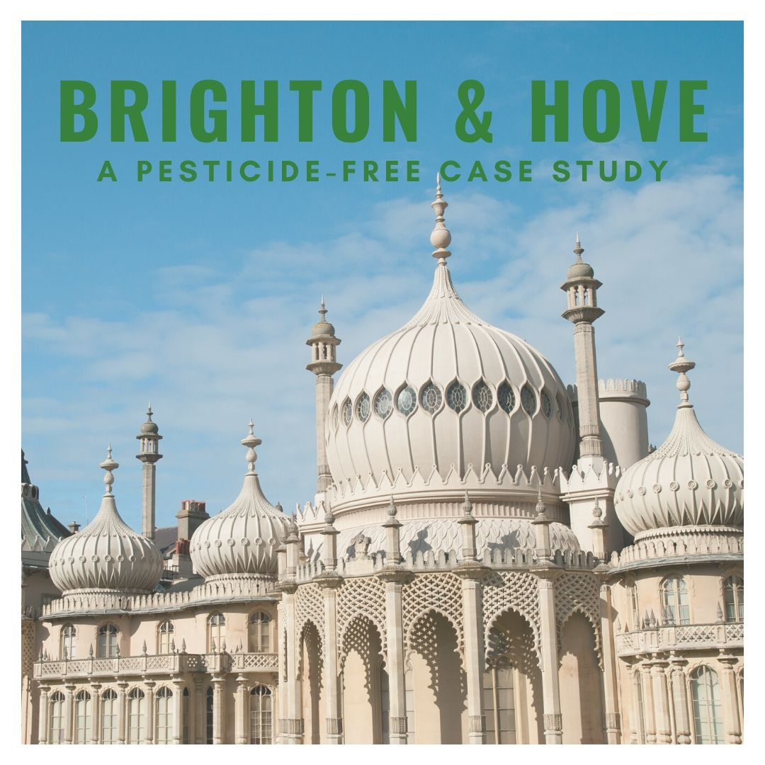 Brighton and Hove - a pesticide-free case study