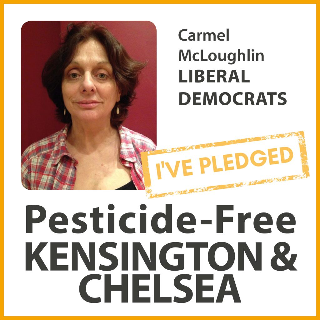 Carmel McLoughlin has taken the pesticide-free pledge in Kensington & Chelsea