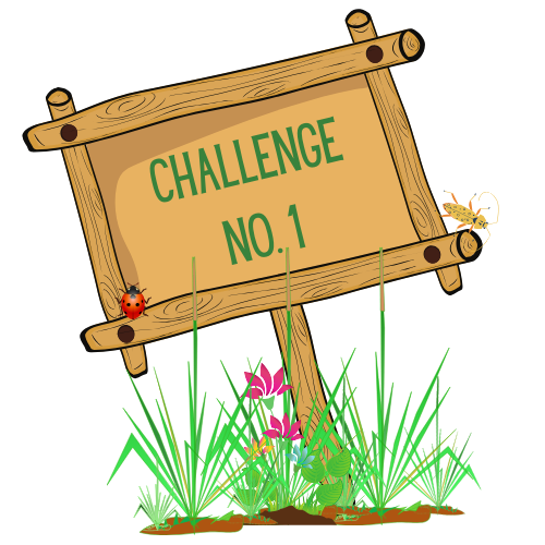 Pesticide-Free Challenge Number 1 for Kids