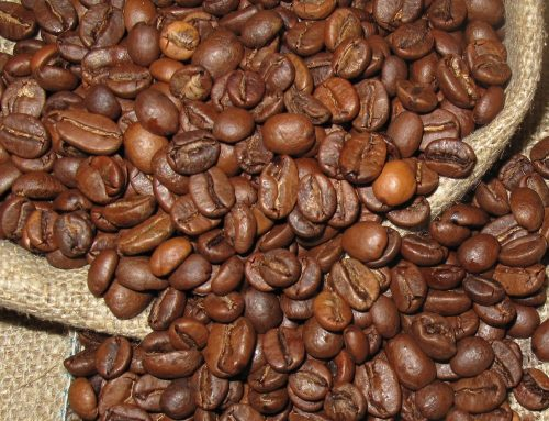 Organic inputs for productive coffee in a changing climate (Case Study Honduras)