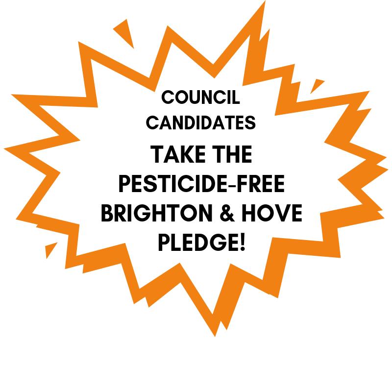Brighton and Hove Council Candidates Take the Pledge