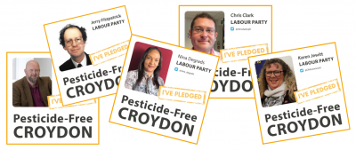 Croydon council ends use of glyphosate in parks and green spaces