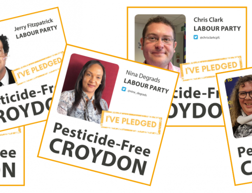 Croydon Council to end the use of glyphosate in parks and green spaces