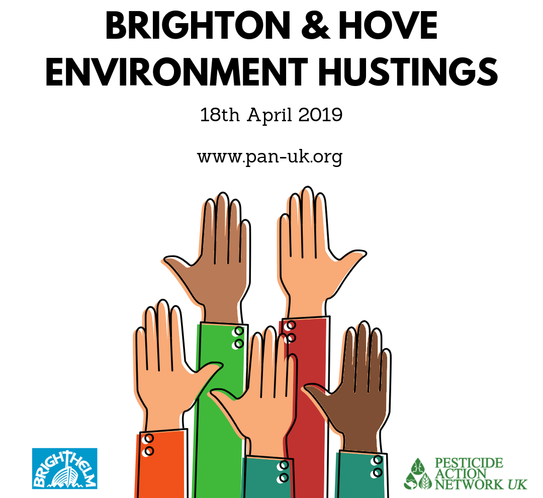 Environment Hustings at Brighthelm in Brighton