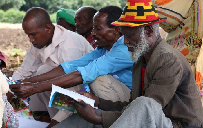 Farmer Field School Training in Ethiopia