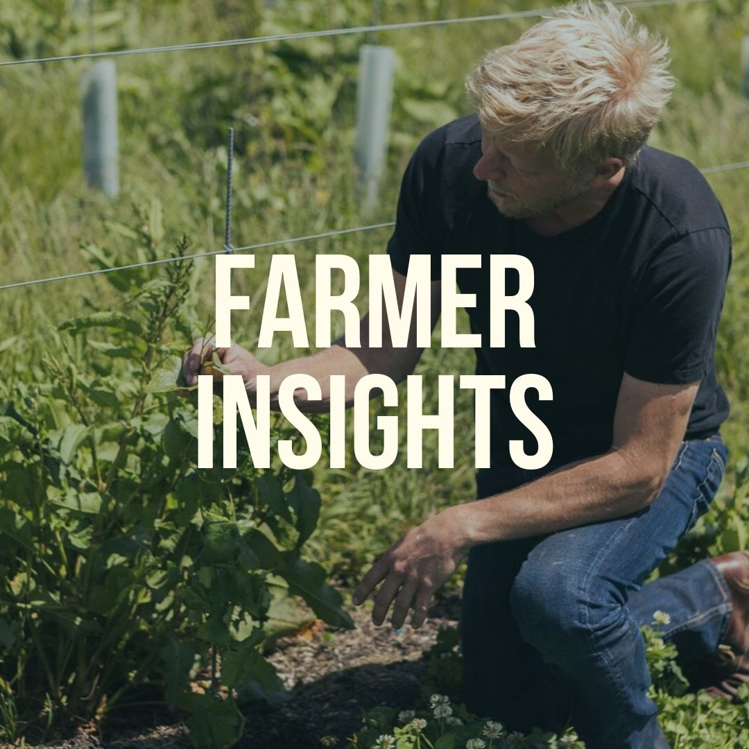 Farmer Insights