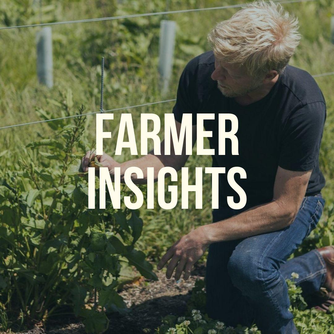 Farmer Insights