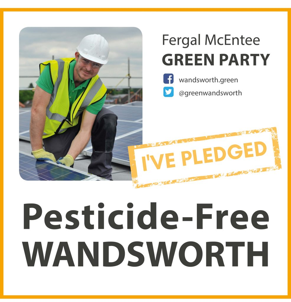 Fergal McEntee has taken the pesticide-free pledge in Wandsworth