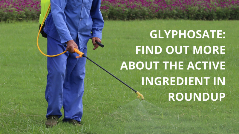 Find out more about glyphosate - the active ingredient in Roundup