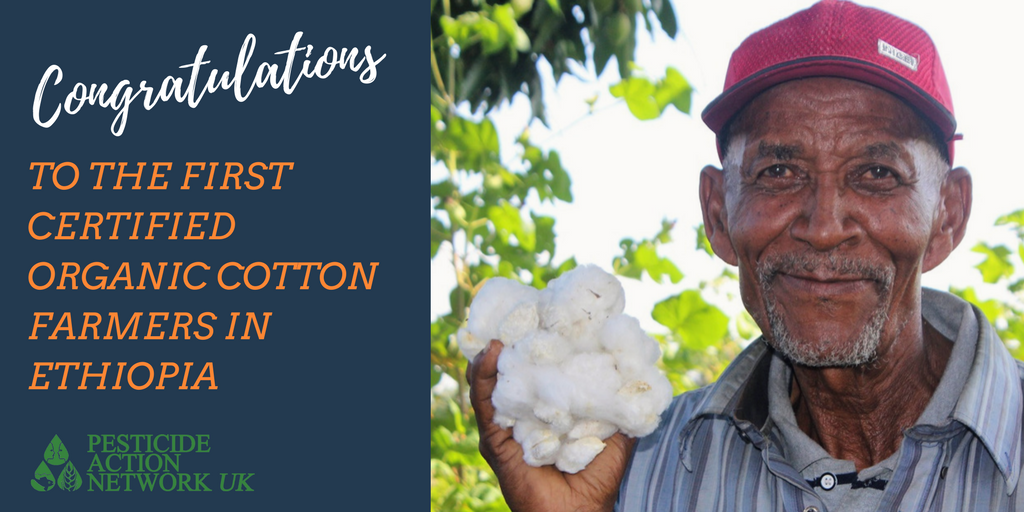 PAN project supports 200 Ethiopian cotton farmers earn organic accreditation
