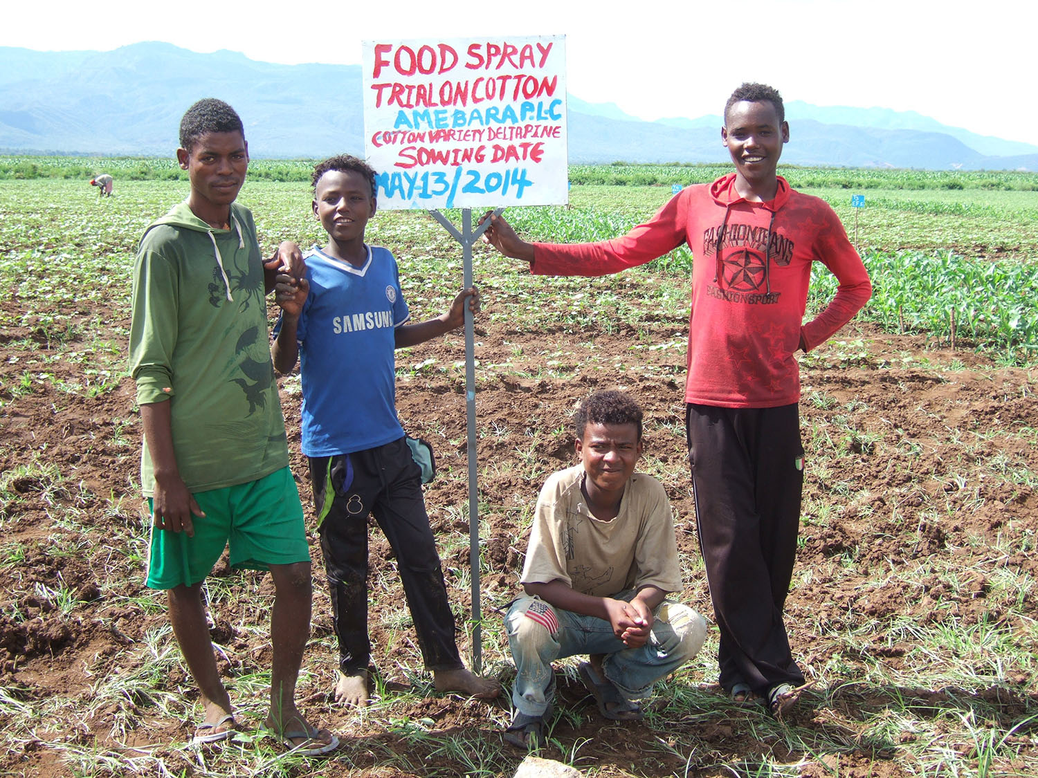 Food Spray Trial on Cotton in Ethiopia