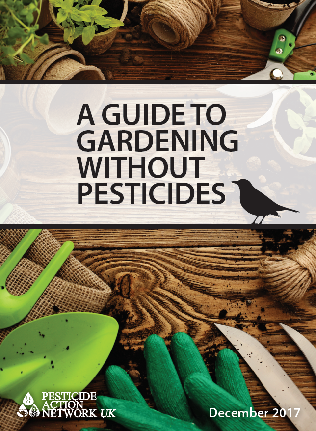 A guide to gardening without pesticides