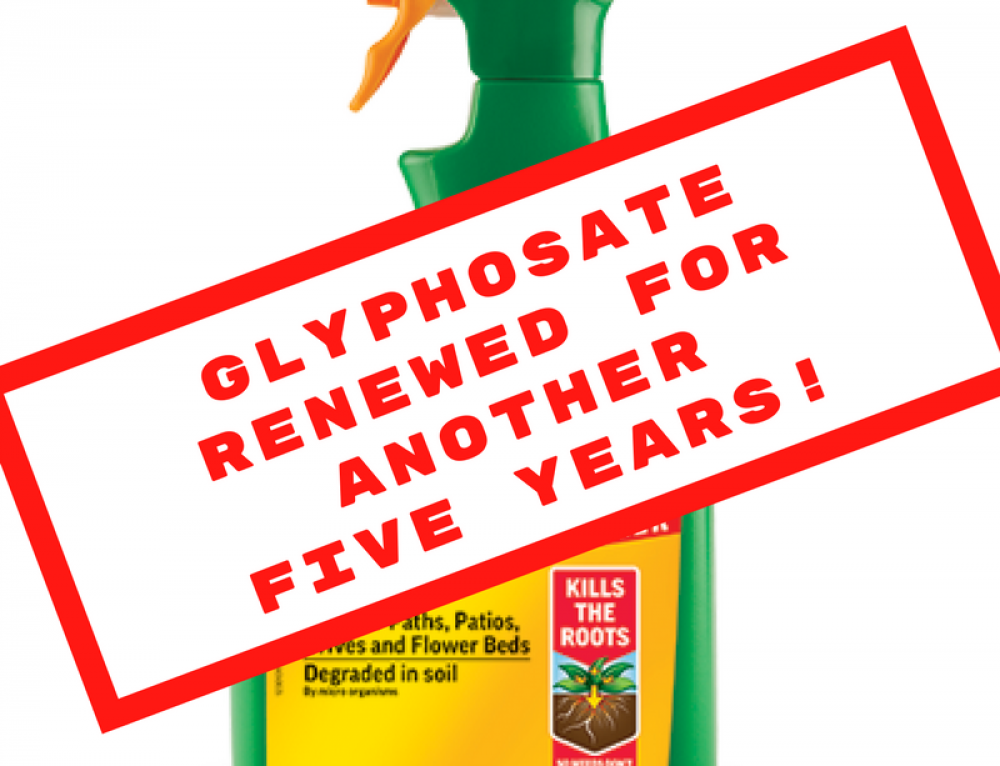 Glyphosate renewed for a further five years