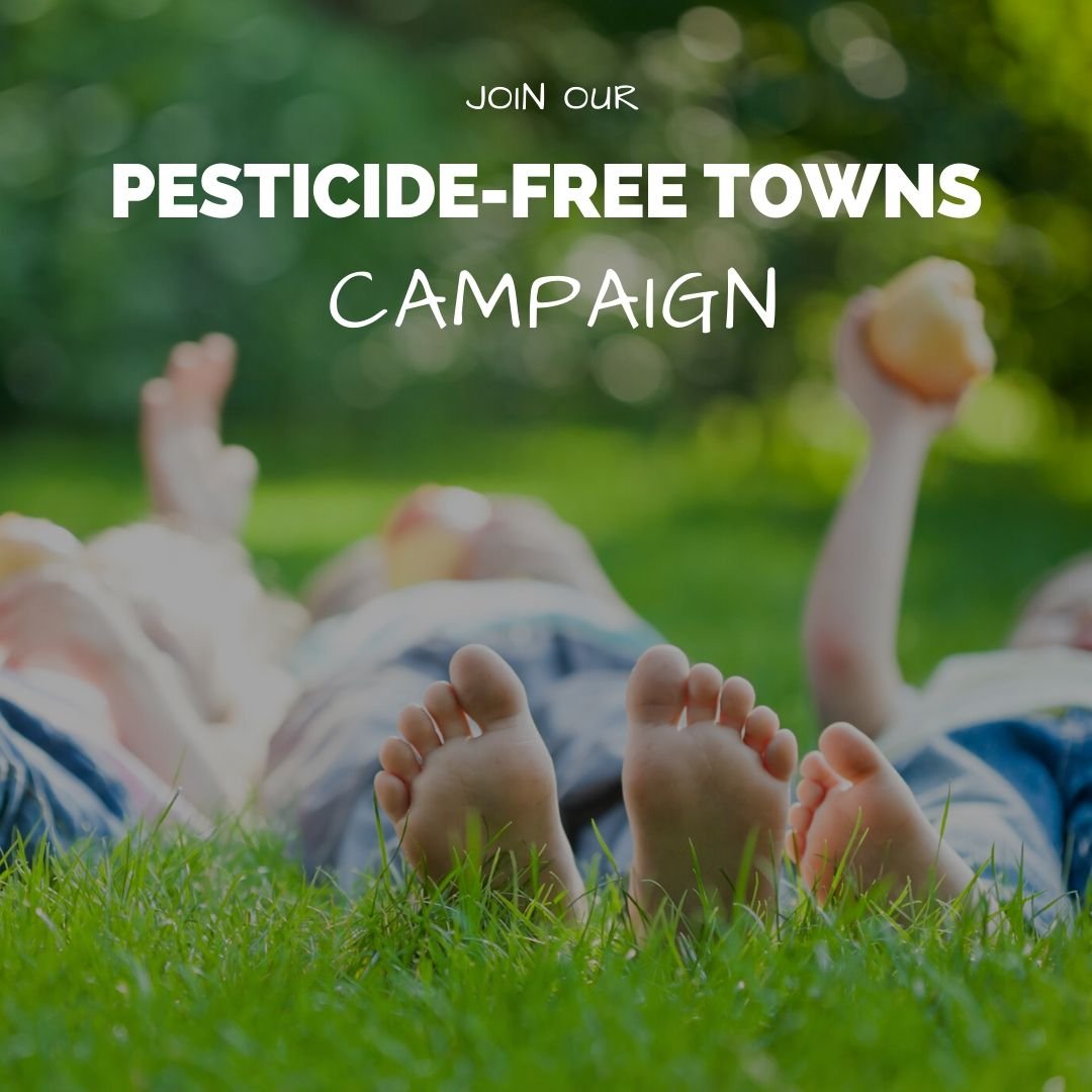 Join our pesticide-free towns campaign