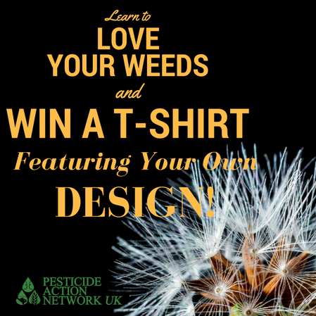 Learn to love your weeds - design competition
