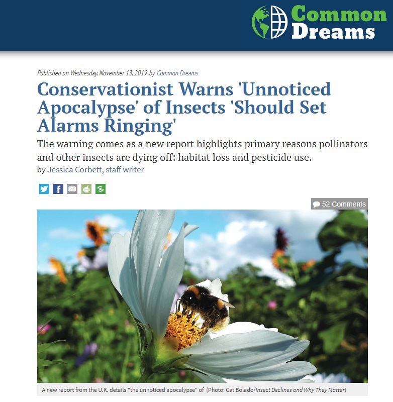 Common Dreams - Conservationists warn unnoticed apocalypse of insects
