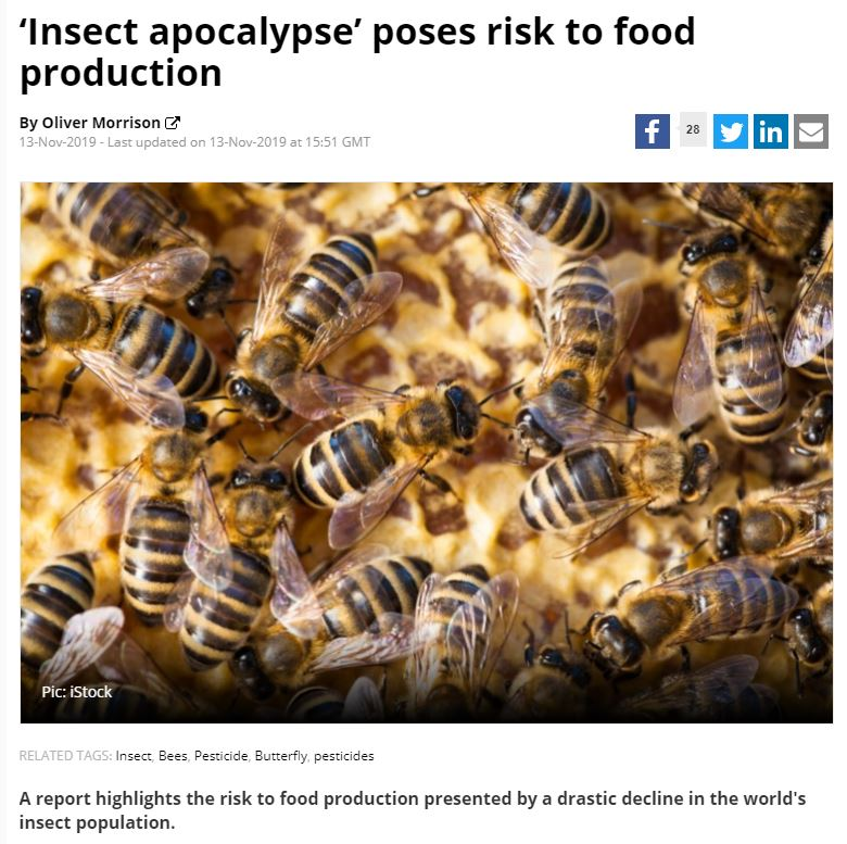 Food Navigator - Insect apocalypse poses risk to food production