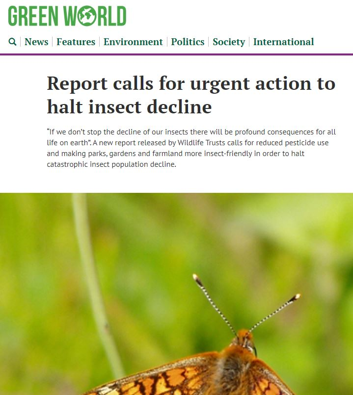 Green World - Report calls for urgent action to halt insect decline