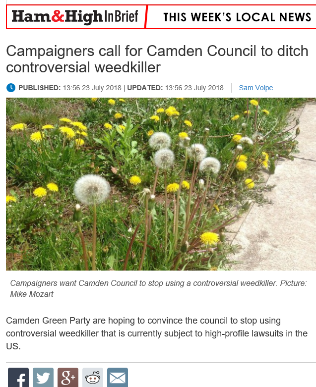 Ham & High - Campaigners call for Camden Council to ditch controversial weedkiller