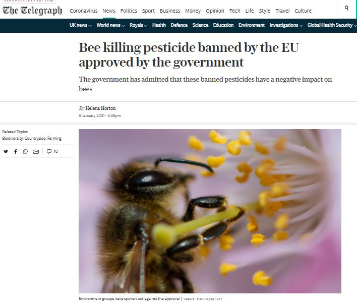 The Telegraph: Bee killing pesticide banned by the EU approved by the government