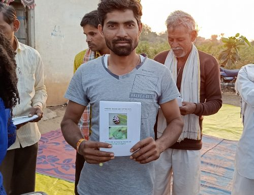 A pesticide-free passage to India