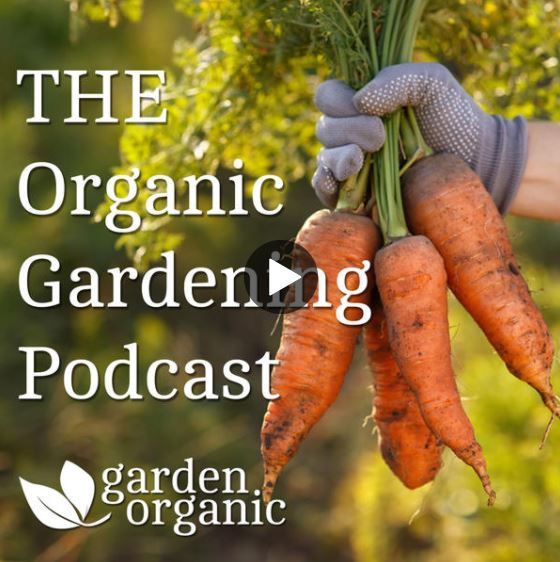 Garden Organic: Keith Tyrell, PAN UK's Director, discusses the dangers of pesticides