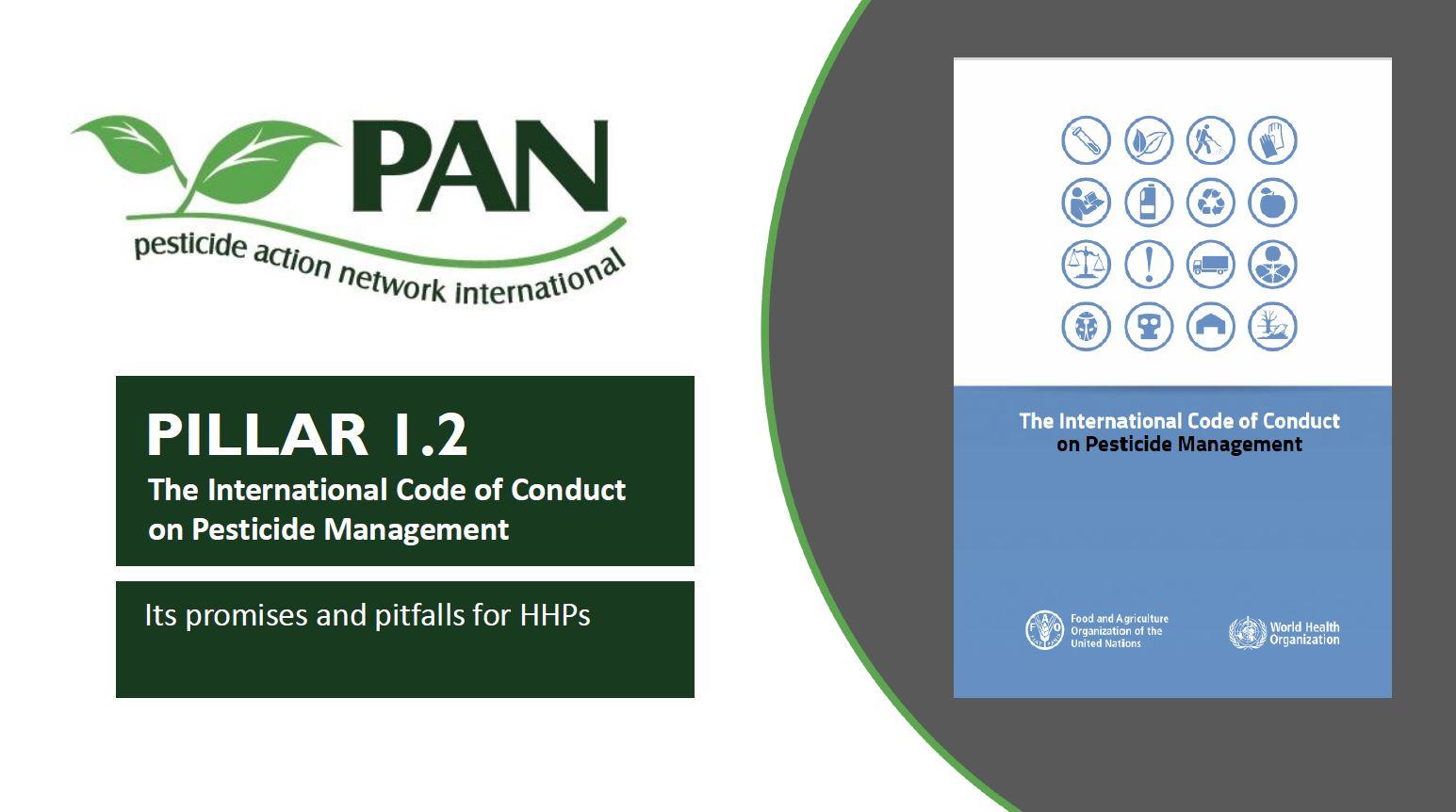 Download presentation for Pillar 1-2
