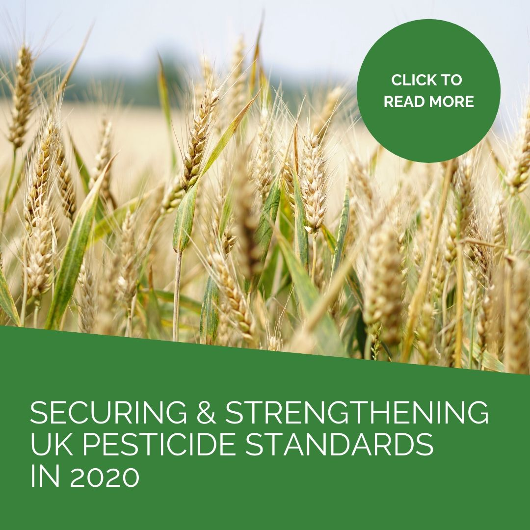 Securing and strengthening UK pesticide standards in 2020