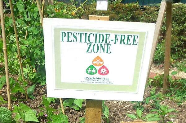 Silent Killer in Your Garden - Pesticide-free Zone