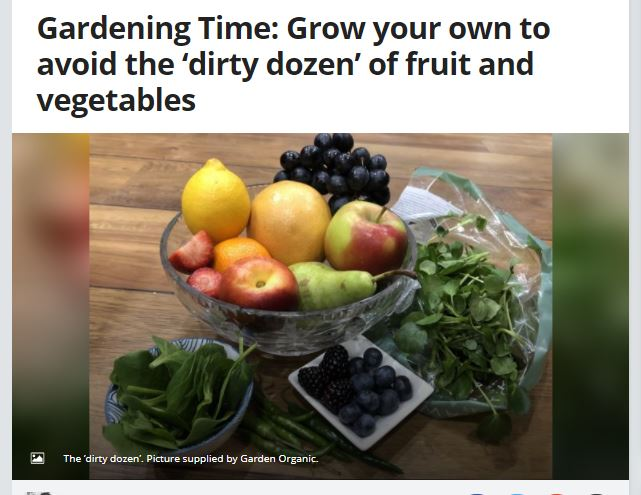 Solihull Observer: Grow your own to avoid the 'dirty dozen' of fruit and vegetables