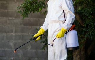 Amenity Sector - spraying of pesticides