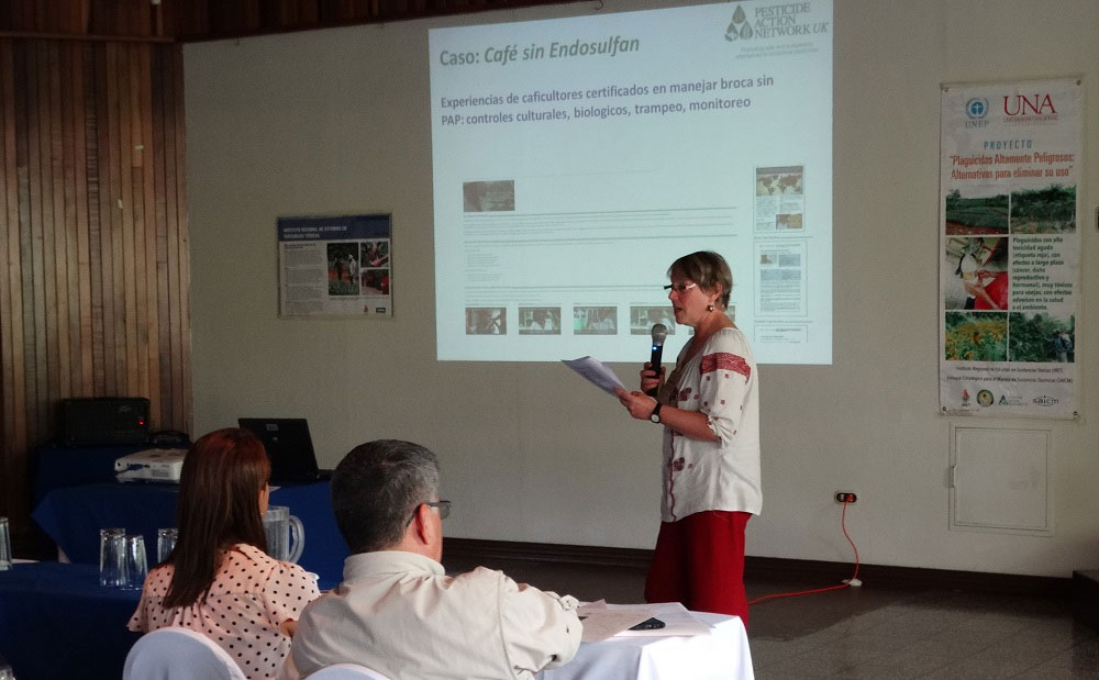 PAN UK presentation at the project workshop on Phasing out HHPs in Pineapple. Credit: IRET, Costa Rica