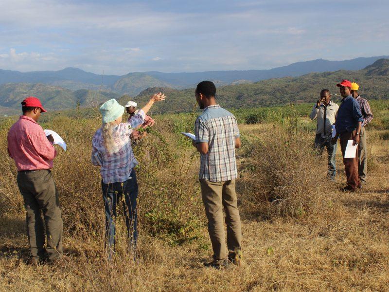 Ecosystem services walks - experiences in Ethiopia