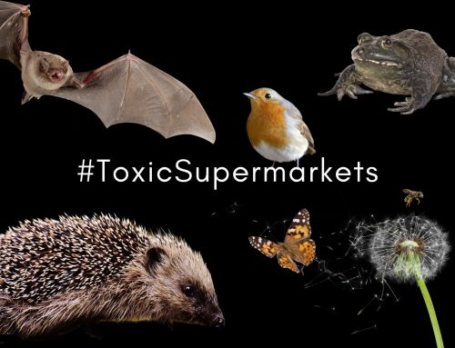 Take pesticide products off supermarket shelves!