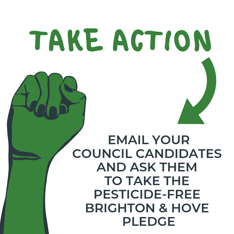 Email your council candidates and ask them to take the Pesticide-Free Brighton & Hove pledge