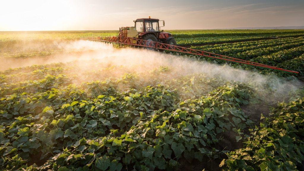 Pesticides in our Food - Pesticide Action Network UK