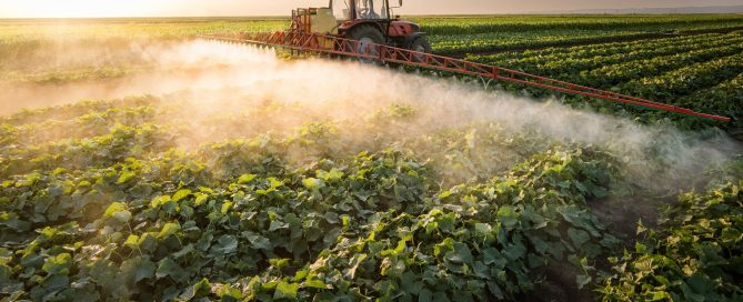 Pesticides in our food