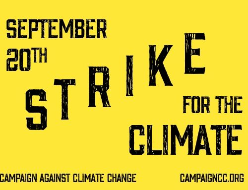 PAN UK is closing in solidarity with young climate strikers